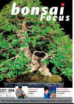 Bonsai Focus May-June 2010 #104 EN
